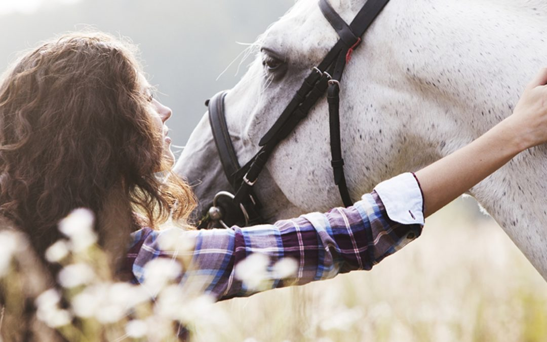 El rol del caballo en la Equinoterapia